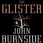 The Glister: A Novel | John Burnside
