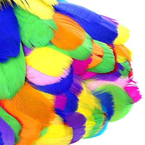 Coceca 500 Colorful Feathers for DIY Craft Wedding Home Party Decorations