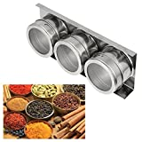 Transer Stainless Steel Magnetic Spice Storage Jar Tins Container With Rack Holder (3, Silver)