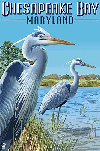 Heron Bay Wall - Chesapeake Bay, Maryland - Blue Heron (9x12 Fine Art Print, Home Wall Decor Artwork Poster)