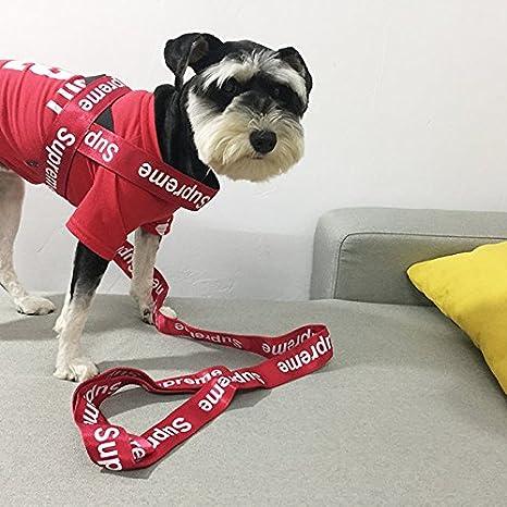 Amazon com : Supreme New York Strap Dog Collar Leash | Box