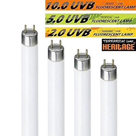 nature-glow deserto 10.0UVB glo fluorescente Tubo rettile lampada lampadina UV Vivarium anfibi Repti Pet luce