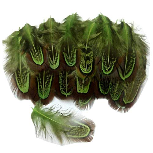 PANAX Nature Decoration Rooster Feather Nature Feathers 50pcs, 4-7cm/ 1,6-2,8 Inches Length, Great for Crafts, Handwerk, DIY, Hats, Earring, Home Decor, DIY -