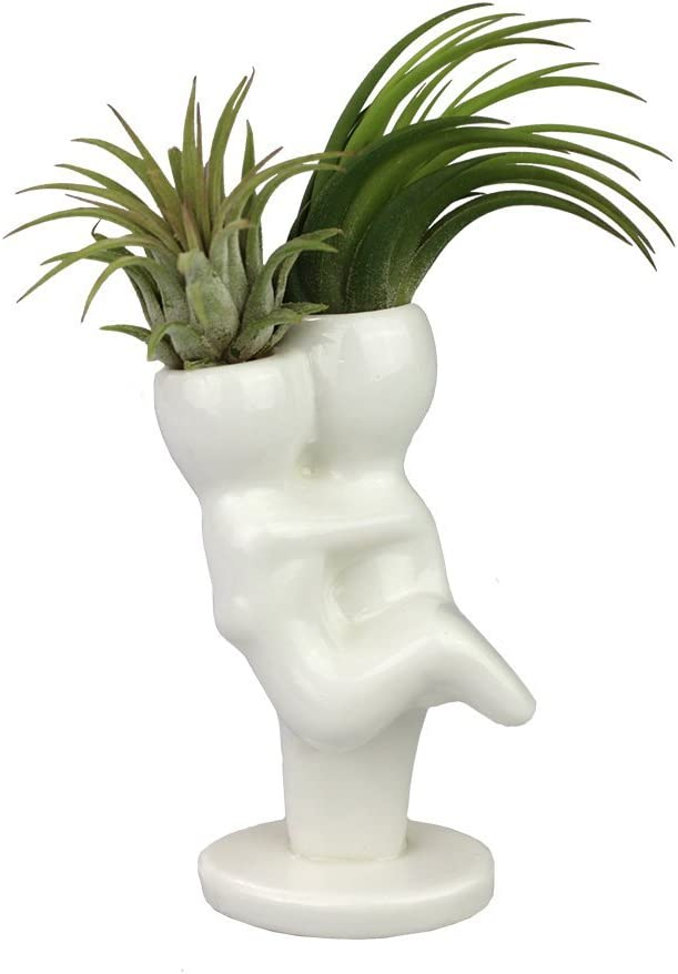 NW Wholesaler – Air Plant Little People Air Plant Holders – Mr. Mrs. Ceramic Desktop Planters for Air Plants and Other Mini Plants
