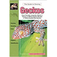 Geckos: Keeping and Breeding Them in Capitivity (Herpetology series)