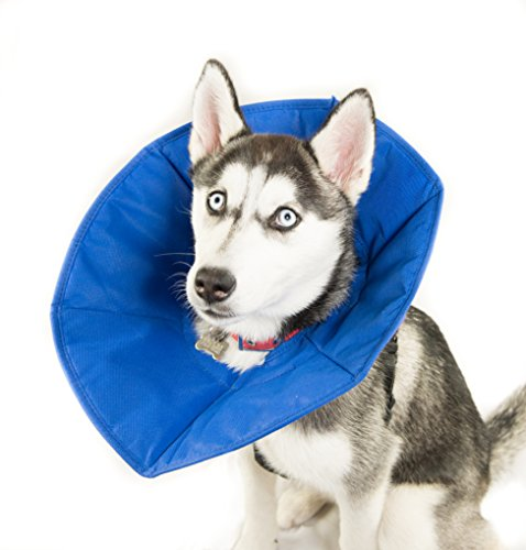 Company Of Animals Soft-E Fabric Elizabethan Collar - Size 2 by Company of Animals (Image #2)
