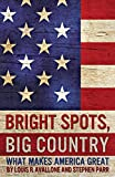 img - for Bright Spots, Big Country: What Makes America Great book / textbook / text book