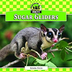 Sugar Gliders (Checkerboard Animal Library: Unique Pets)