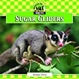Sugar Gliders, Kristin Petrie, 1617834432