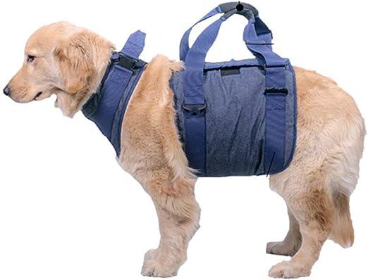 BINGHONG3 Arnés de elevación para Perro, protección de ...