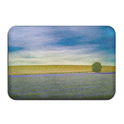 Lavender Landscape Front Door Mat Large Outdoor Indoor Entrance Doormat Home - Waterproof Low Profile Door Mats Stylish Welcome Mats Garage Patio Snow Scraper Front Doormats