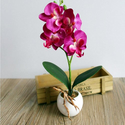 Artificial Flowers With Vase, RIUDA Four Butterfly Orchid Meaty Plant Bonsai Creative Flower Arranging Accessories - And Plants Flowers