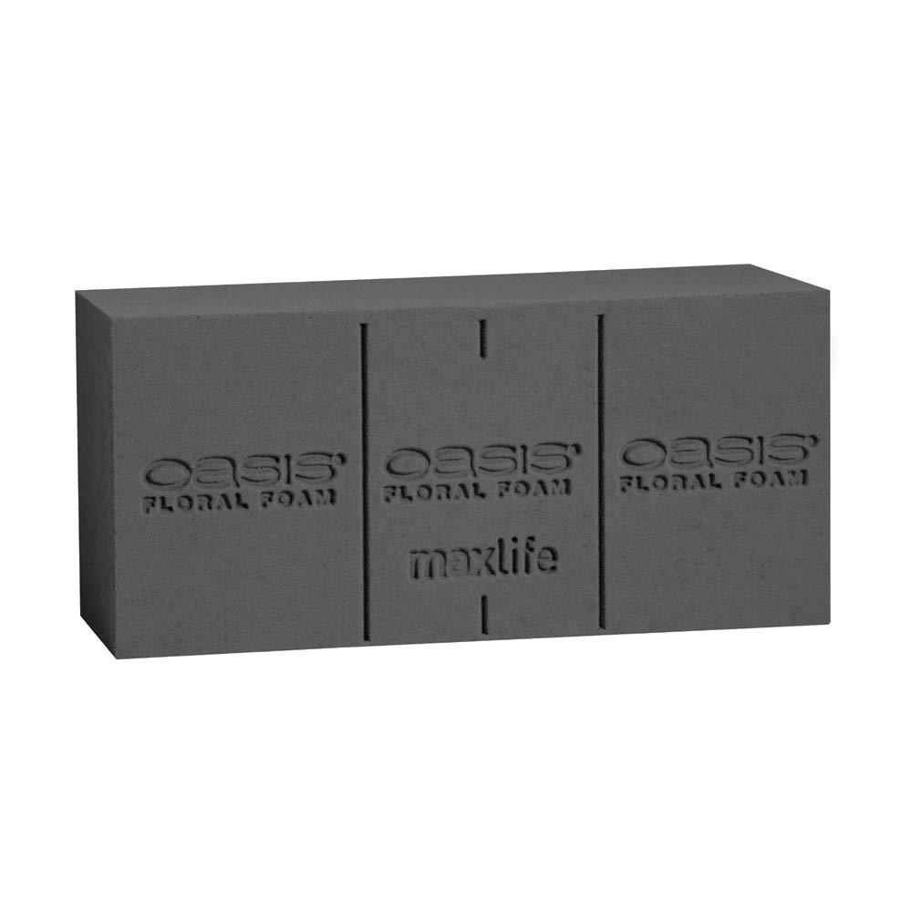 Oasis Midnight Floral Foam Bricks - MaxLife Standard Wet Foam for Fresh Flowers (Case of 24)
