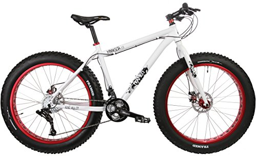 5 Of The Best Affordable Fat Tire Bikes Ride Reviews