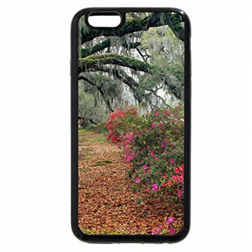 iPhone 6S / iPhone 6 Case (Black) The Wonder of Nature