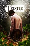 Trixter: Trix Adventures Book One (Books of Arilland 3)