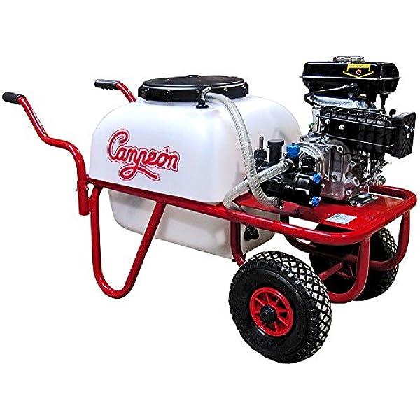 Bricoferr BFOL0864 Mochila fumigadora con Motor a Gasolina ...