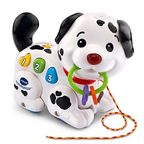 VTech Pull and Sing Puppy (Best Educational Toys For Babies 6 12 Months)