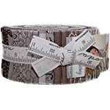 Homegrown Jelly Roll 40 2.5-inch Strips by Deb Strain for Moda Fabrics 19820JR