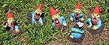 Zombie Gnomes: The Rising Herd