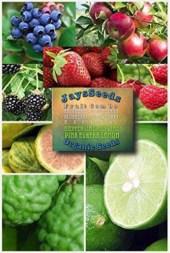 - Fruit Combo Pack Raspberry, Blackberry, Blueberry, Strawberry, Apple (Organic) 565+ Seeds UPC 600188191042 + Key Lime, Kieffer Lime, Pink Eureka