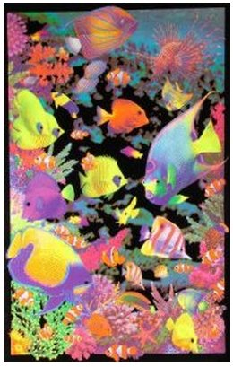 Living Reef (Lawrence Painting Opticz Living Reef Blacklight Poster Print Size 50X75Cm C307)
