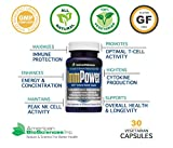 American BioSciences ImmPower | Enhanced Immune Support, Natural Killer Cell Activity & Cytokine Production | 30 Vegetarian Capsules, 500mg of AHCC per Capsule (2 Pack)