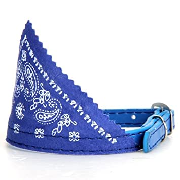 Collar Pañuelo Bandana Ajustable para Perro Gato Mascota Azul: Amazon.es: Coche y moto