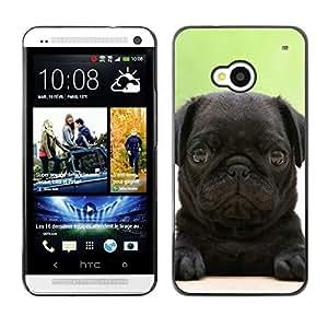 - toy poodle dog? - - Monedero pared Design Premium cuero del tir¨®n magn¨¦tico delgado del caso de la cubierta pata de ca FOR HTC 801e HTC One M7 Funny House