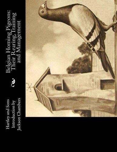 Download Dangerous Designs: Large Print (Design Series) (Volume 1) PDF ePub fb2 book