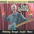 Hillbilly Boogie Surfin Blues
