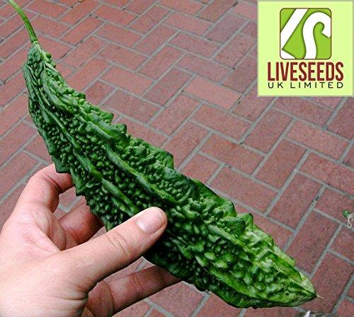 Liveseeds - Karawila (Karela)/ Green Bitter Melon...