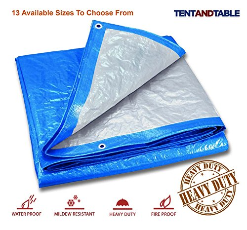 30' Canvas (15-Foot by 30-Foot Blue and Silver Reversible Multi-Purpose Waterproof Poly Tarp Cover for Tents and Weather Protection)
