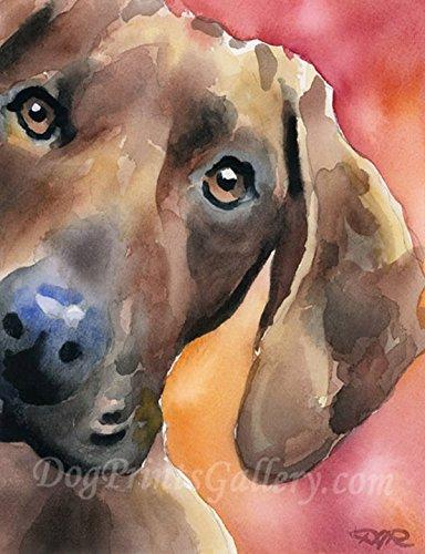 Redbone Coonhound Dog Art Print by Artist DJ Rogers