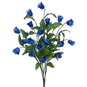 "26"" Campanula Bush Delphinium Blue (pack of 6) 27"