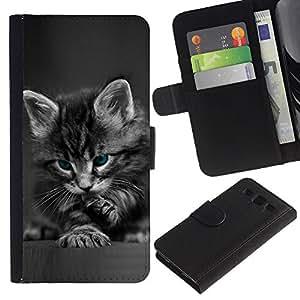 """SAMSUNG Galaxy S3 III / i9300 / i747 , la tarjeta de Crédito Slots PU Funda de cuero Monedero caso cubierta de piel ("""" Cute Paw Kitten Whiskers Grey Baby Cat"""")"""