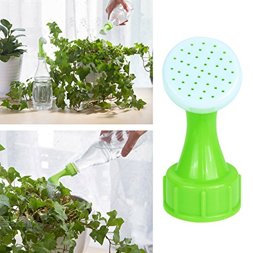 timed watering system indoor - 2
