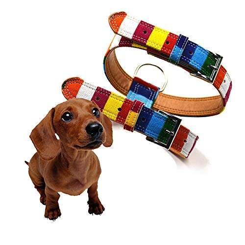 Colorful Pet Harness Belt PU Simple Adjustable Dog Harness Rainbow Pet Chest Harness Pet Kitten Pig Puppy Collars Dog Pet Cat Necklace Pet Cat Jewelry Pet Memorial Cat Dog Charms (Multicolor, L)