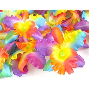 "(48) Rainbow Hawaiian Cattleya Silk Flower Heads - 3.5"" - Artificial Flowers Heads Fabric Floral Supplies Wholesale Lot for Wedding Flowers Accessories Make Bridal Hair Clips Headbands Dress 28"
