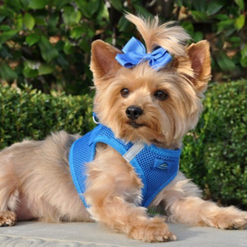 Image of CHOKE FREE REFLECTIVE STEP IN ULTRA HARNESS - BLUE - ALL SIZES - AMERICAN RIVER (XL) by Doggie Design