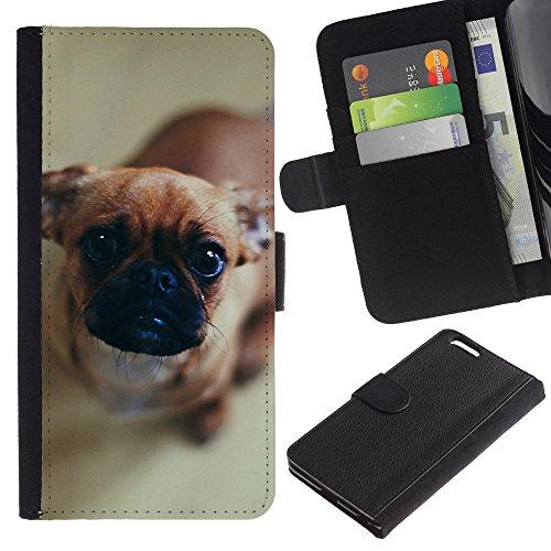 Billetera de Cuero Caso Titular de la tarjeta Carcasa Funda para Apple Iphone 6 PLUS 5.5 / Pug Puppy Dog Canine Pet Brown Nose / STRONG