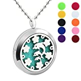 BFF Jewelry Fashion Aromatherapy Essential Oil Necklace Diffuser Locket Necklaces Dolphin Flower Pendant