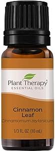Plant Therapy Cinnamon Leaf Essential Oil 10 mL (1/3 oz) 100% Pure, Undiluted, Therapeutic Grade