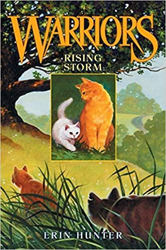 Rising Storm Warriors 4 By Erin Hunter