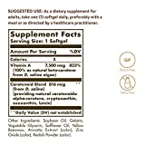 Solgar Oceanic Beta-Carotene 25,000 IU, 90 Softgels - Healthy Vision, Skin & Immune System, Potent Antioxidant - 100% Natural Pro-Vitamin A - Gluten Free, Dairy Free - 90 Servings