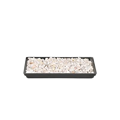 "Brussel's 8"" Humidity Tray with Decorative Rocks : Garden & Outdoor"