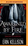 Awakened by Fire (Dragons of Bloodfire)