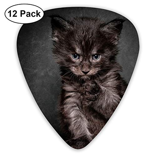 V5DGFJH.B Sad Kitty with Tattoo Classic Guitar Pick Player's Pack for Electric Guitar,Acoustic Guitar,Mandolin,Guitar Bass