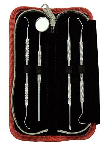 4 Stück Dental Set - Berechnung Plaque Zahnsteinentfernung Zahnschaber