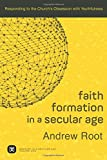 Faith Formation in a Secular Age: Responding to the Church's Obsession with Youthfulness (Ministry in a Secular Age)
